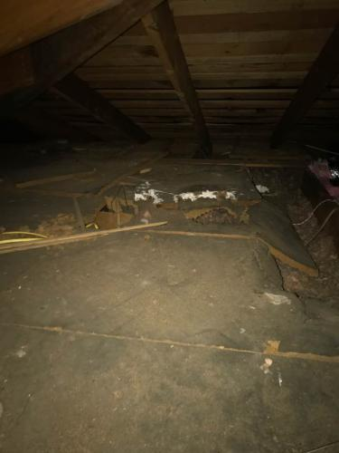 Insulation installation and removel in los angeles (71)